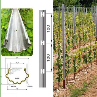 1.8m Durable Stakes raisin / Vignoble Trellis Poste